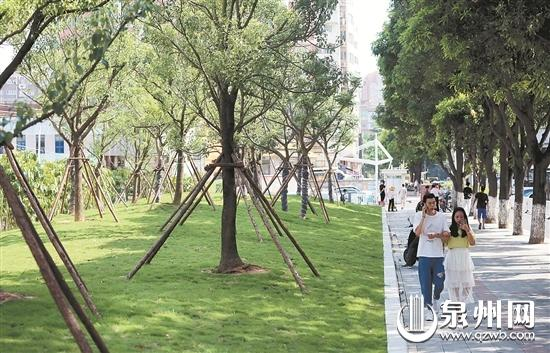 古城绿植行动收成效 小绿地里的微幸福
