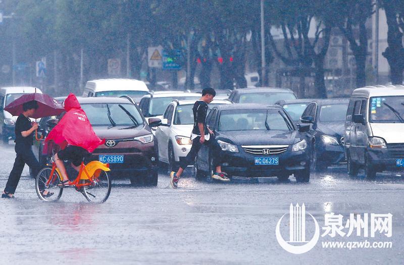最后小伙往马路另一边跑去,消失在大雨中。